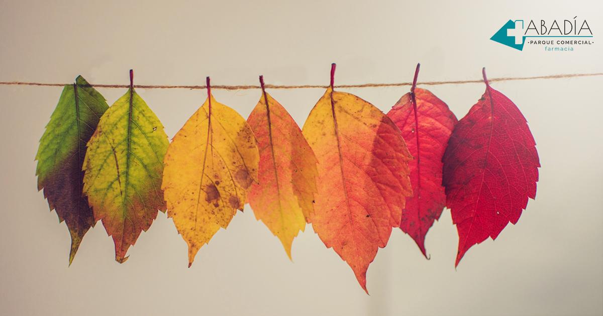 Llega el otoño a Farmacia Abadía. ¿Cómo subir las defensas?